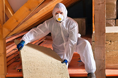 Expert holding insulation materials in an attic (small size)
